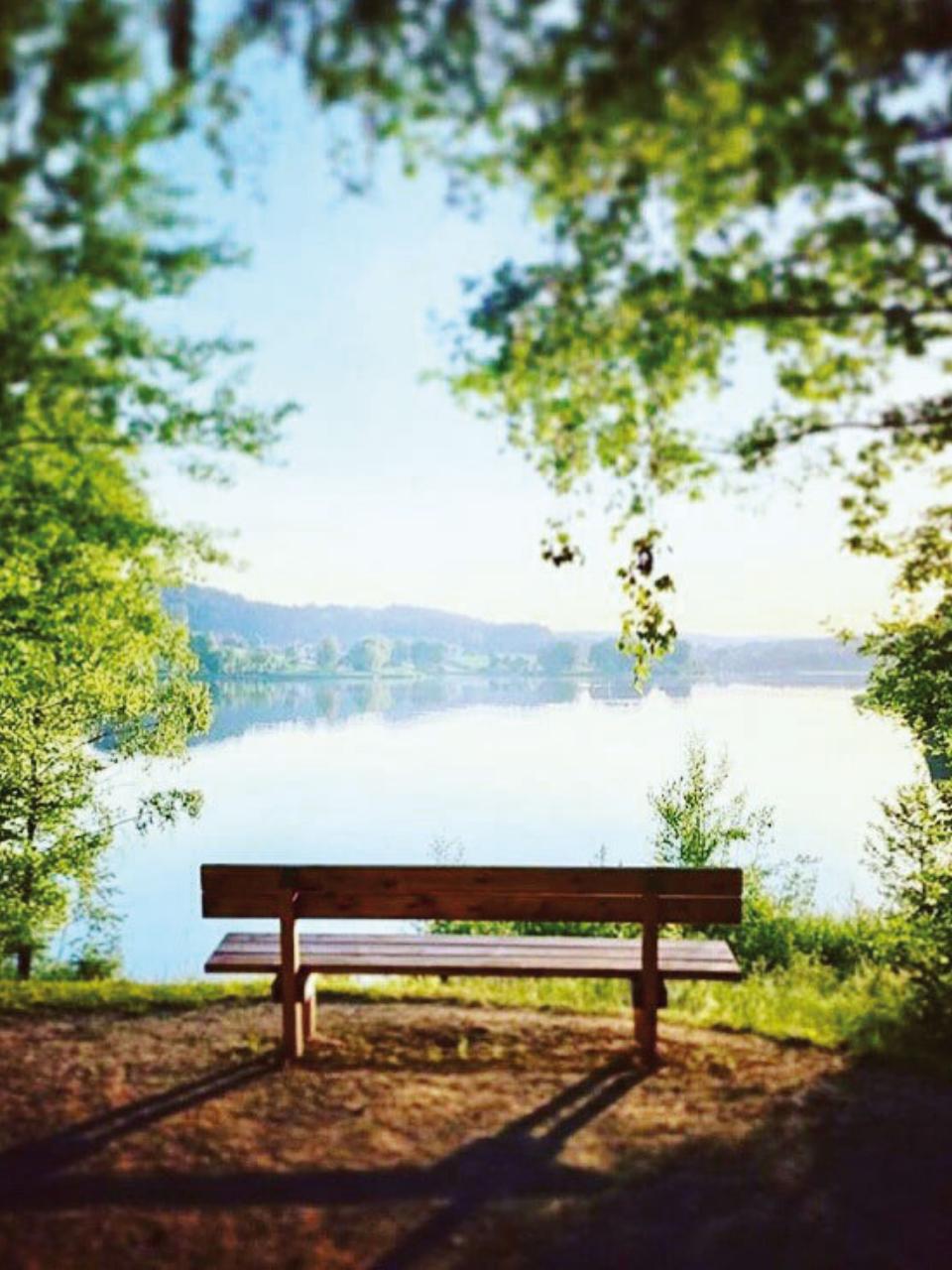Geniessen Sie die Ruhe unserer Wälder